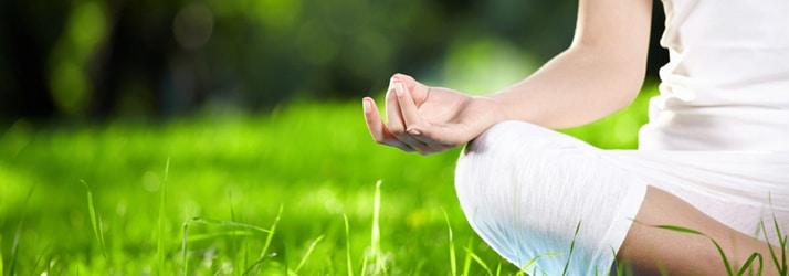 blog fielden wellness